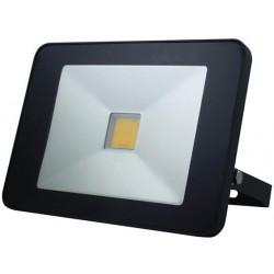 Projecteur LED 50W avec détecteur invisible