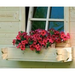 Jardinière pour abri de jardin