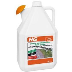 HG Nettoyant dépôts verdâtres P.A.E. 5L