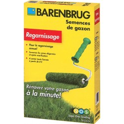 Gazon BARENBRUG regarnissage 500gr