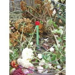 Thermomètre pour compost NATURE